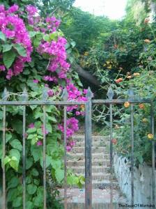 Most Mysterious Garden Cuesta de San Miguel
