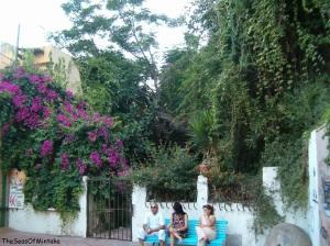 Mystery Garden Torremolinos
