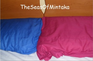Blue and Fuchsia Pillowcases