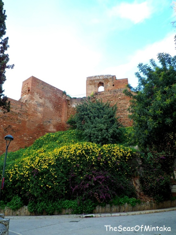 Flowers by the Alcazaba Malaga