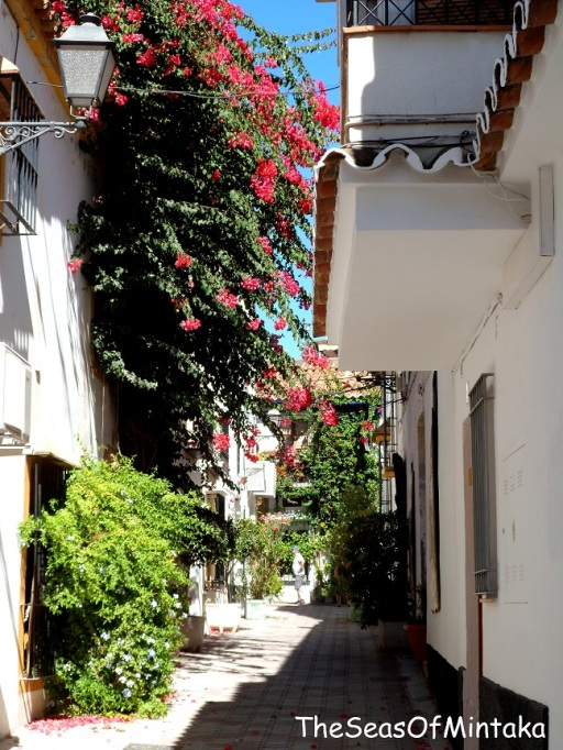 Marbella Street With Flowers