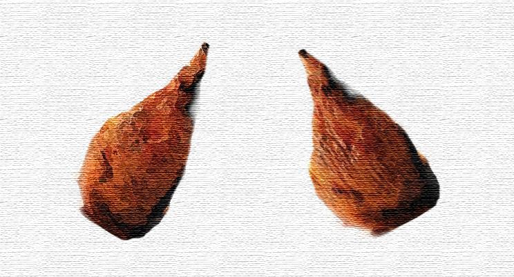 Paleo diet drumsticks