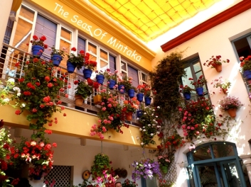 Patios of Cordoba