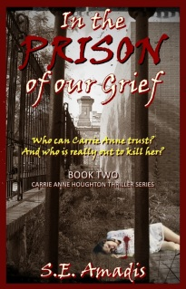 In the Prison of our Grief - S.E. Amadis